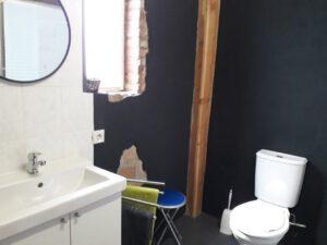 badkamer-2-koeienstal